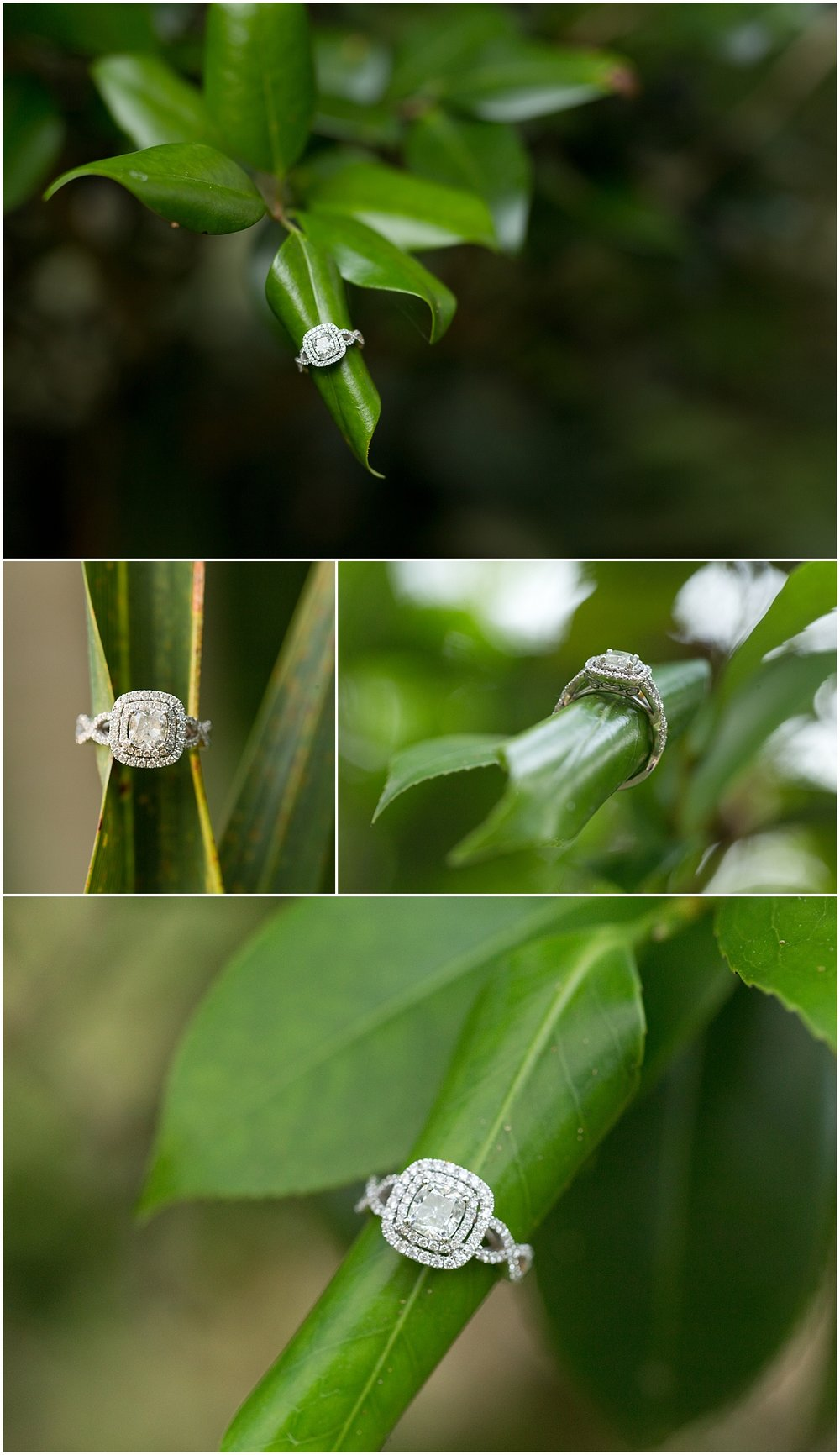 beautiful diamond engagement ring on leaves - Ocean Springs wedding photographer