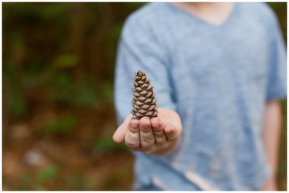 woodsy photo of boy holding pine cone