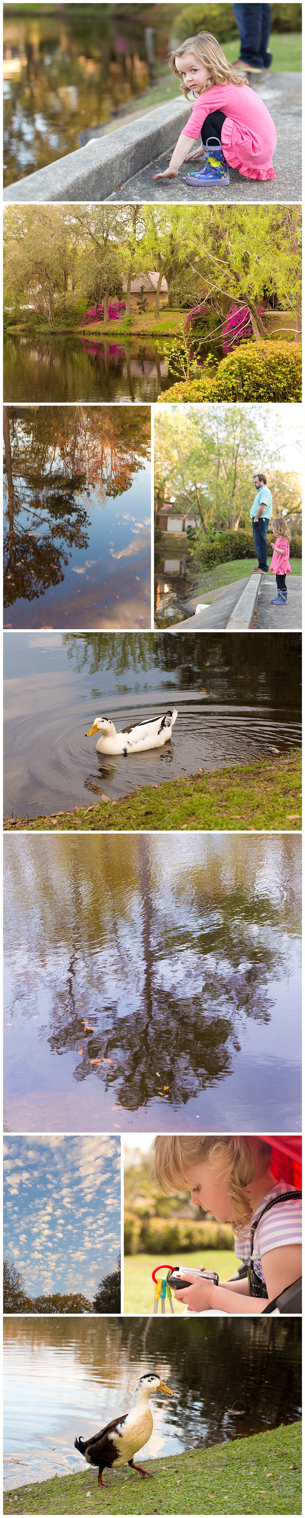 duck pond visits in Ocean Springs, Mississippi - nature and family lifestyle photographer