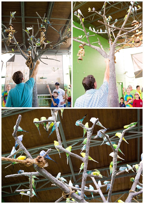 feeding parakeets at Tweeter Post - Ocean Adventures Marine Park Gulfport Mississippi