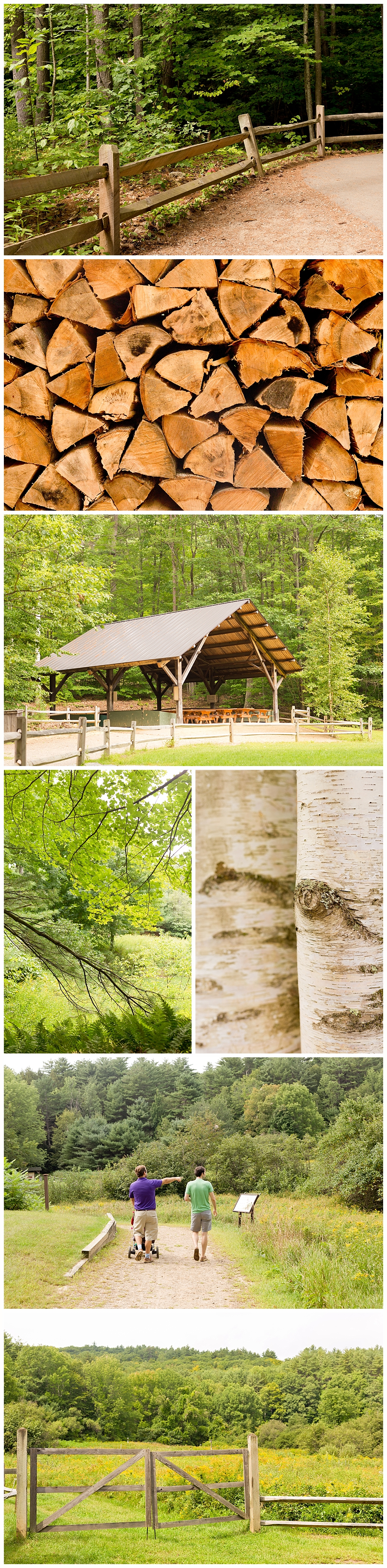 beautiful outdoor scenery at Squam Lakes Natural Science Center