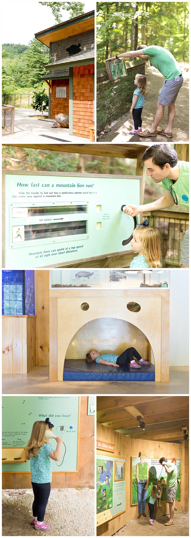 family visiting educational exhibits at Squam Lakes Natural Science Center