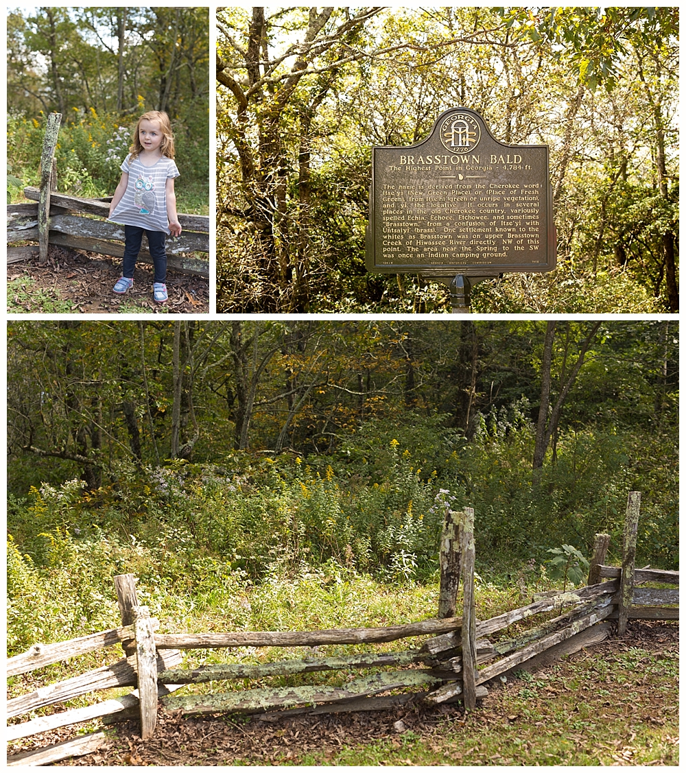 Brasstown Bald sign and fence