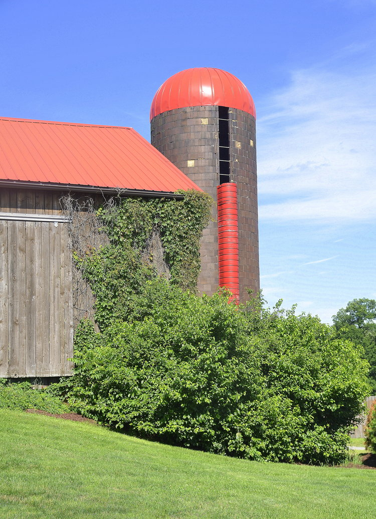 Armstrong+Farms_Barn4.jpg