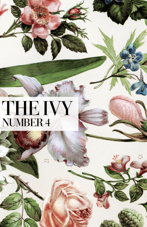 April 2015 cover of The Ivy
