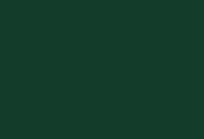 tullamore dew logo1.png
