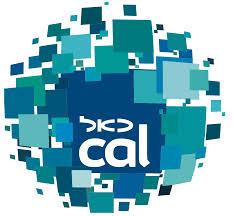 Visa Cal.jpg
