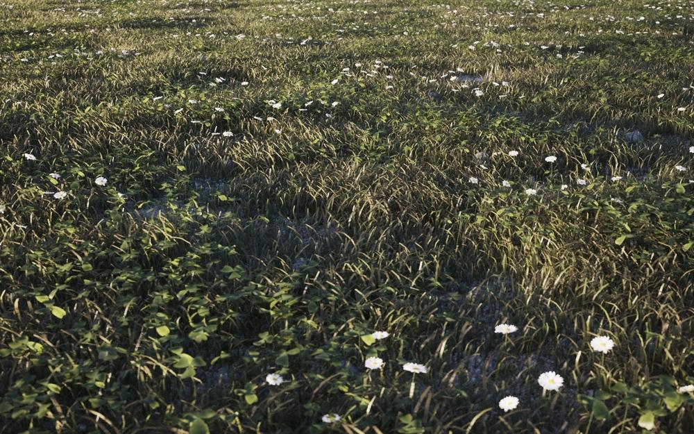 Final roughgrass base