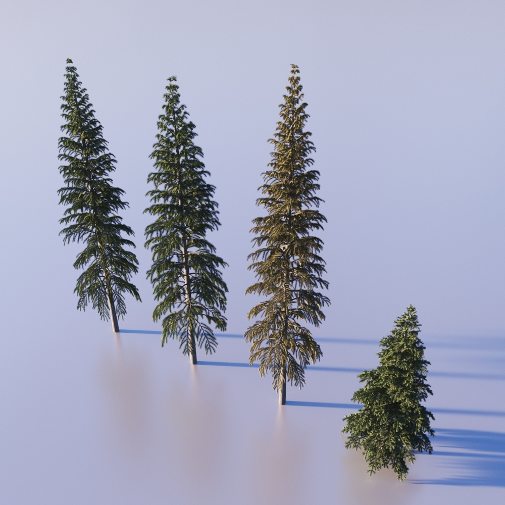 Fir trees provided by 3dmentor