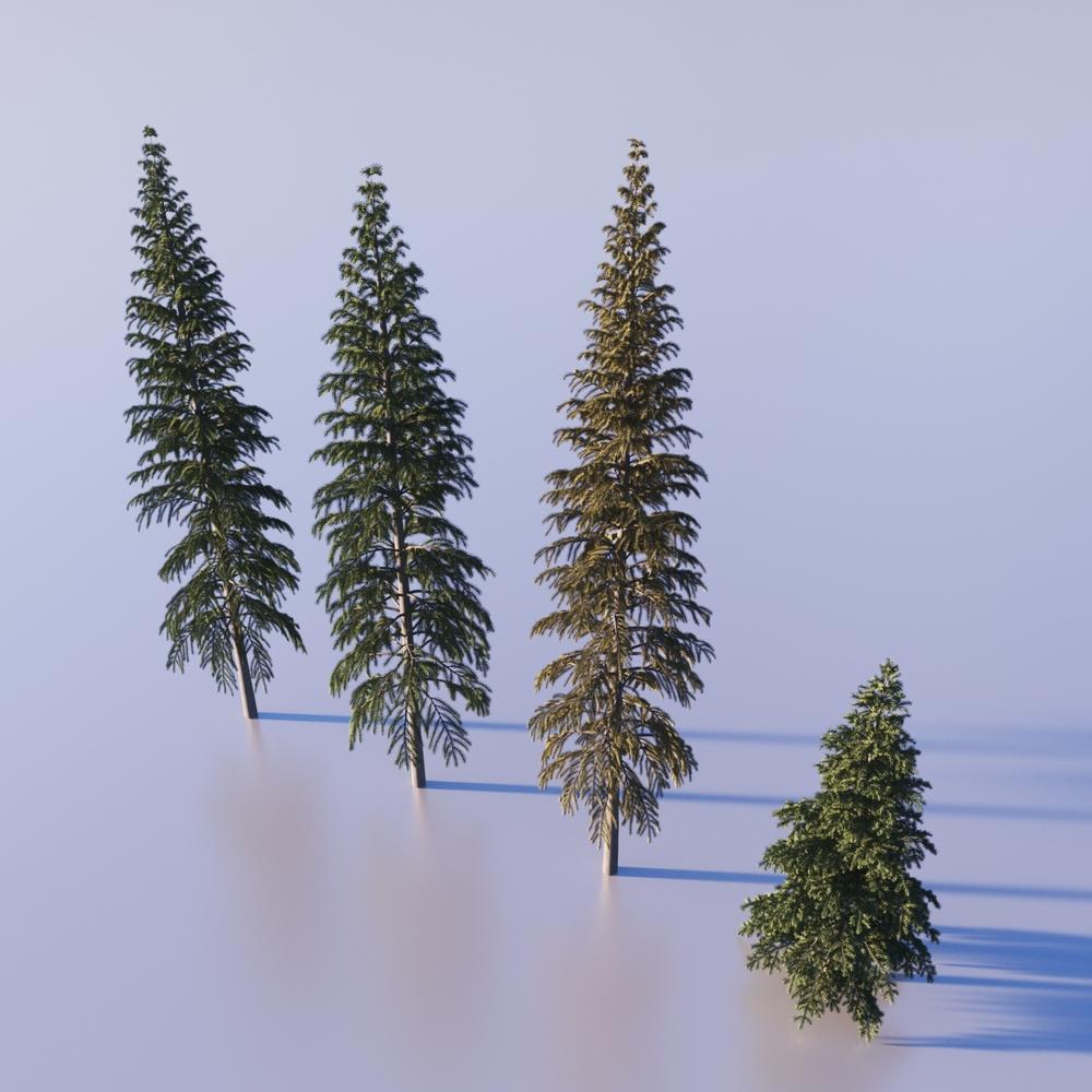 Fir trees provided by 3dmentor