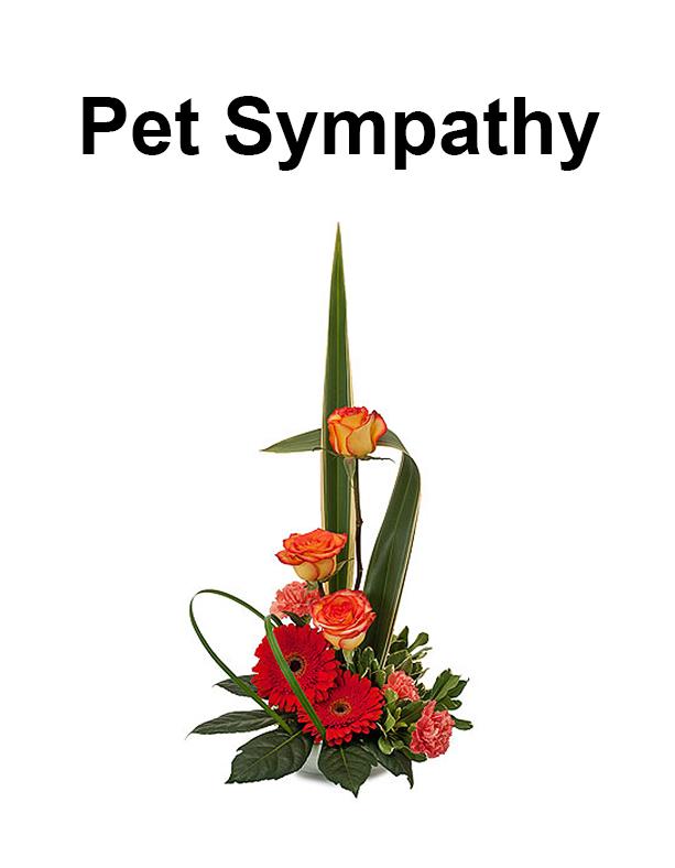 pet_sympathy.png
