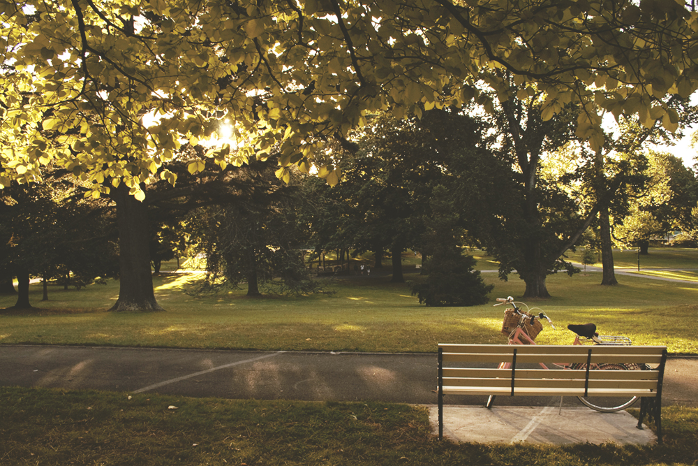 (A photo from way back when I did a post about  my favourite places to sit  in Launceston)