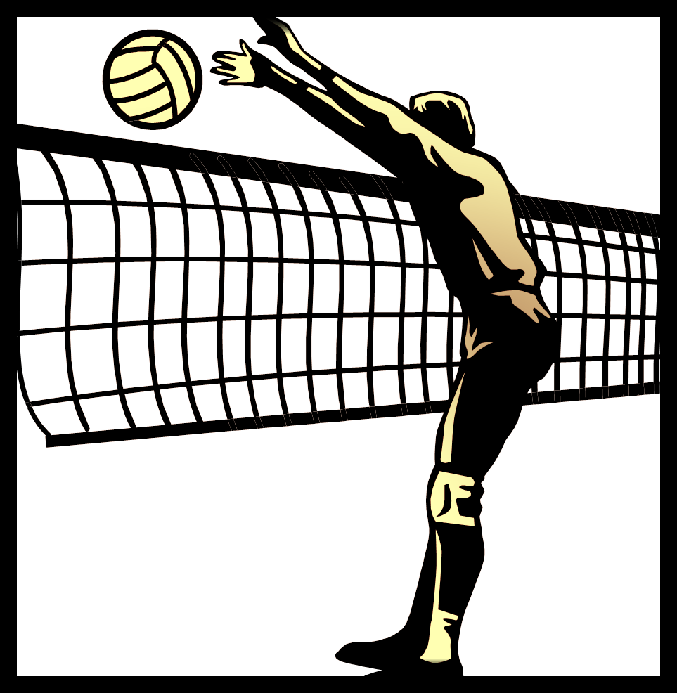 volleyball pic.png
