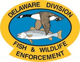 delaware enforcement web.jpg
