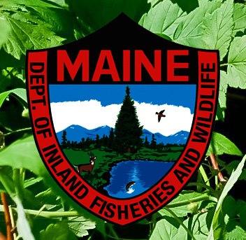 maine-inland-fisheries-and-wildlife.jpg