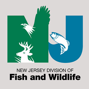new-jersey-division-of-fish-and-wildlife.jpg