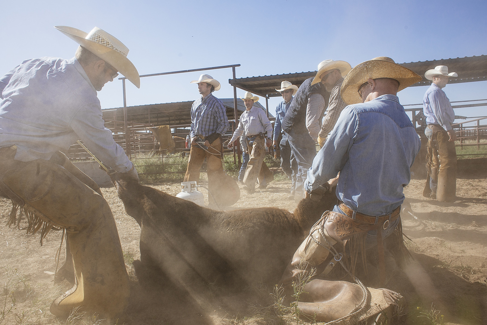 Cowboys in West Texas dress a certain way. Cowboy hat, long-sleeve button-down shirt, jeans, boots and chaps. Your shirt has to be tucked in your pants. Showing up at a ranch any different, is seen as a sign of disrespect from the old cowboys.