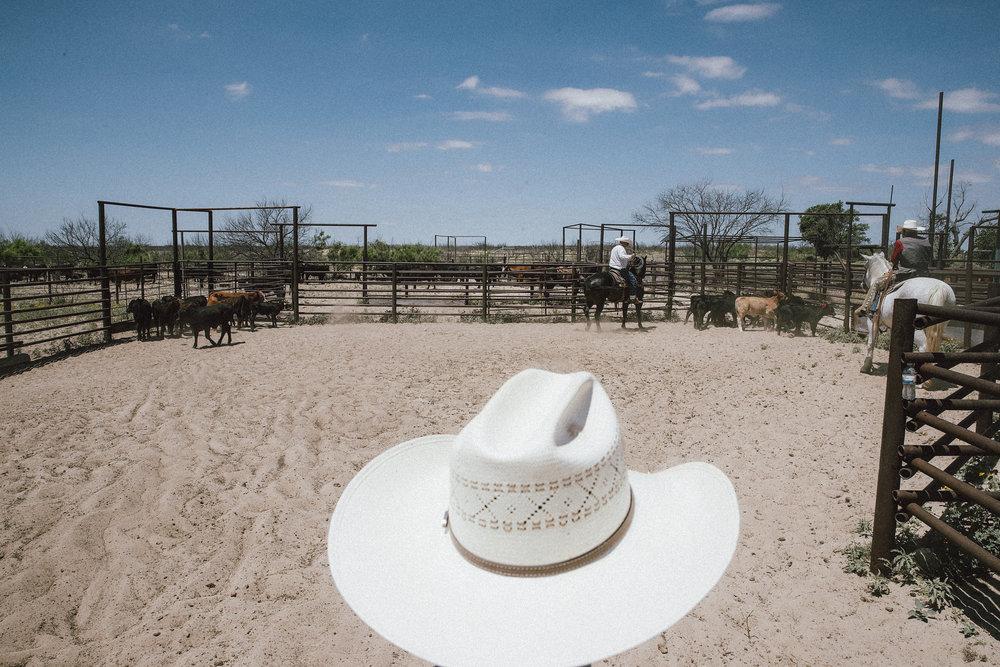 West Texas, 2017