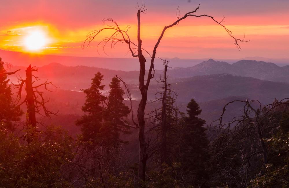 Cedar Crest Sundown