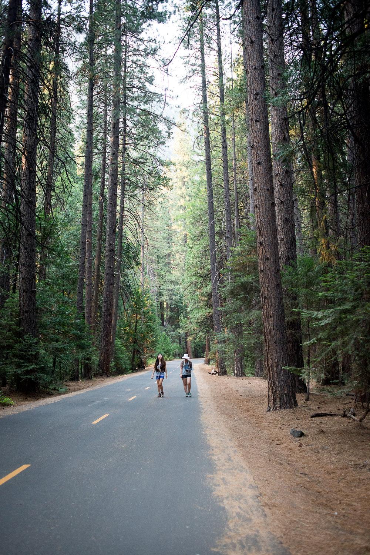 2017_susanadler_YosemiteTrailMavens-0056.jpg