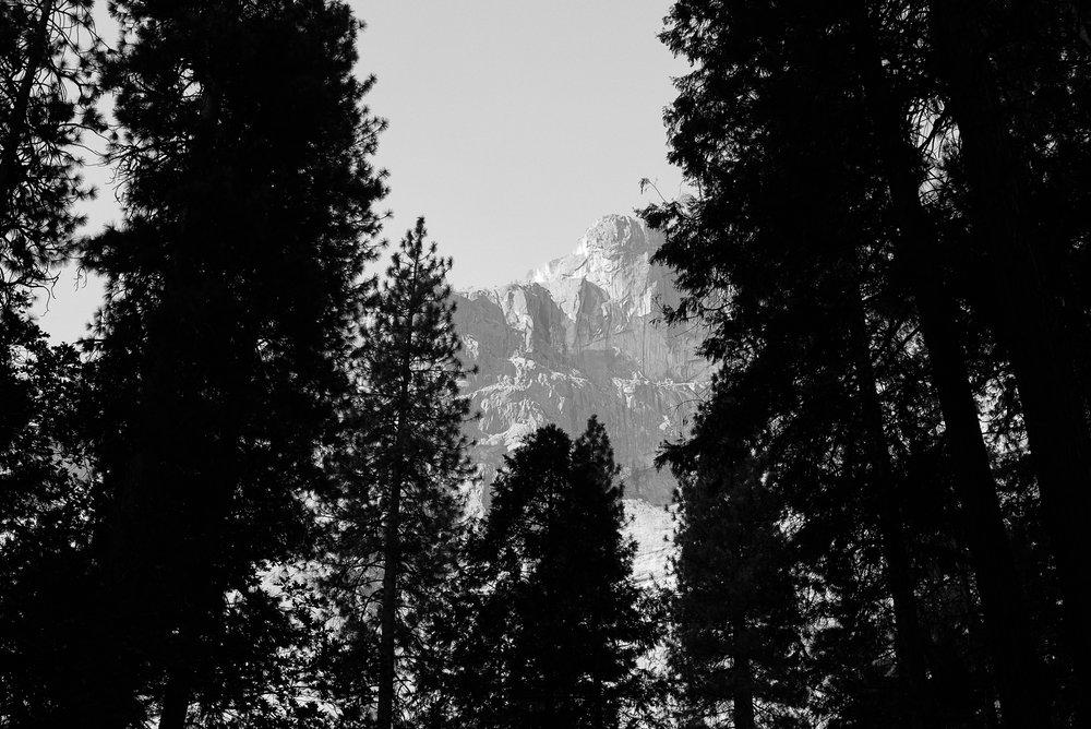 2017_susanadler_YosemiteTrailMavens-0075.jpg
