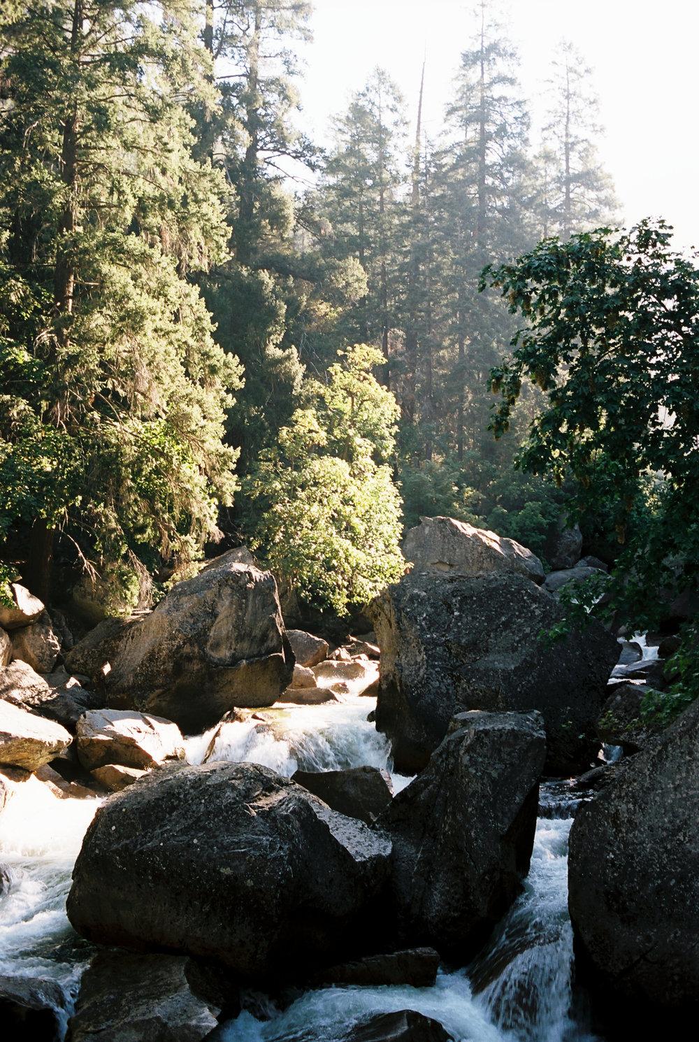 2017_susanadler_Yosemite3068.jpg
