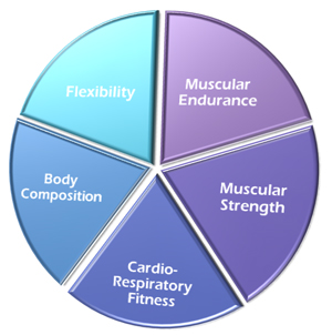 the 5 components of health