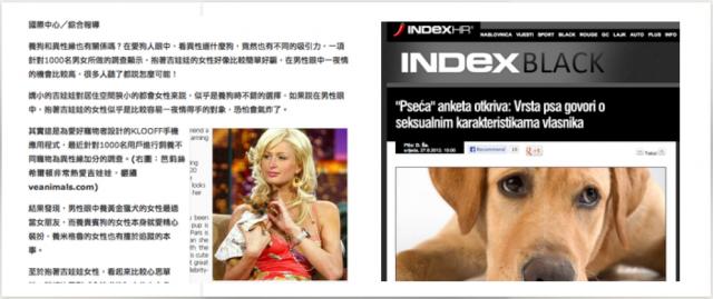 international-media-hits-paris-hilton.png