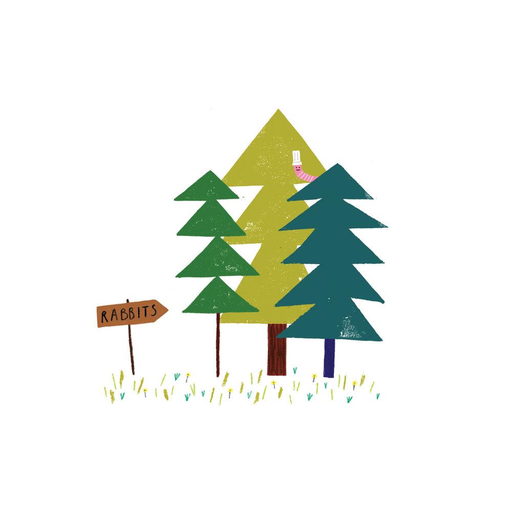 trees woods.jpg