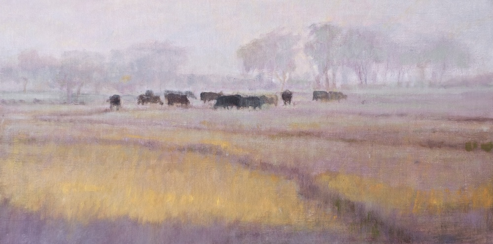 Black Cows in the Fog. 12 x 24. Oil on linen panel.