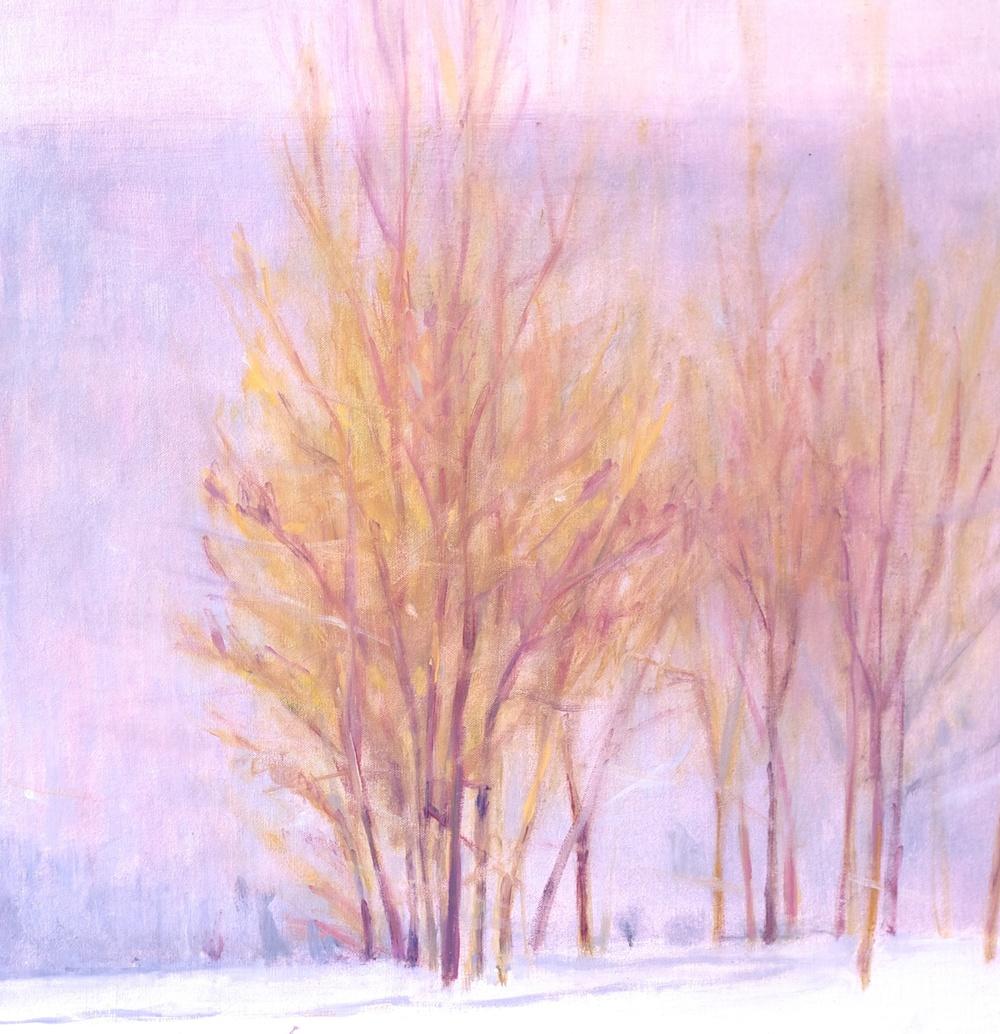 Snow Mountain Ranch Aspens. 21 x 21. Oil on linen panel.