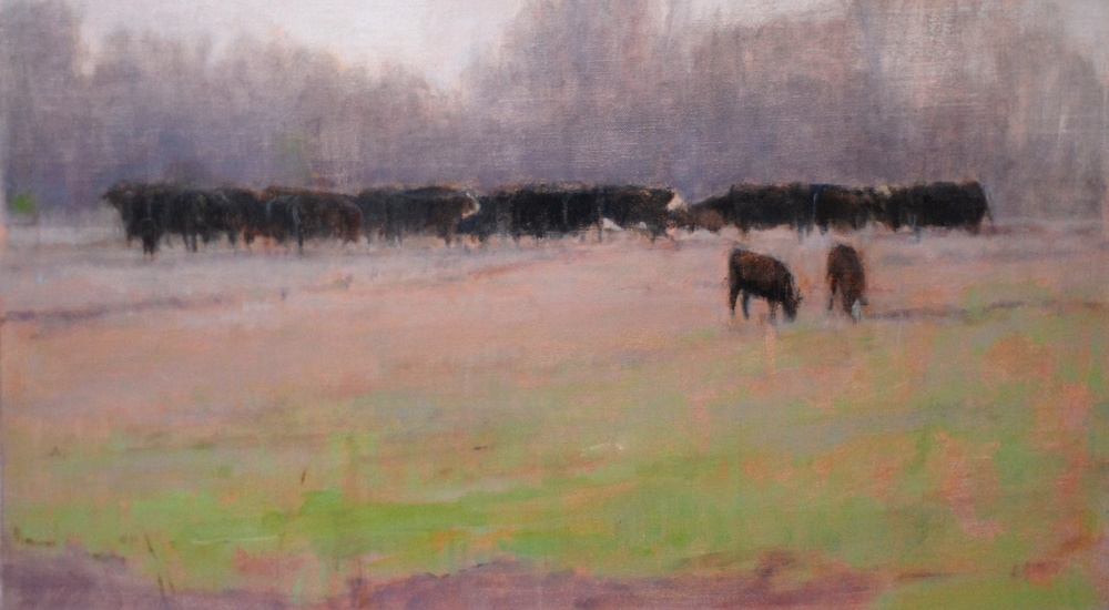 Fredericksburg Cows. 12 x 24. Oil on panel.
