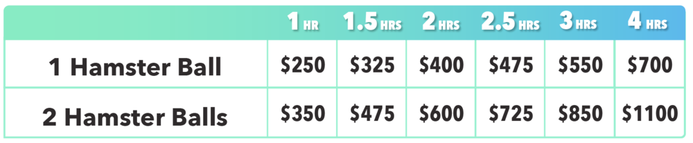 Hamster Ball Pricing