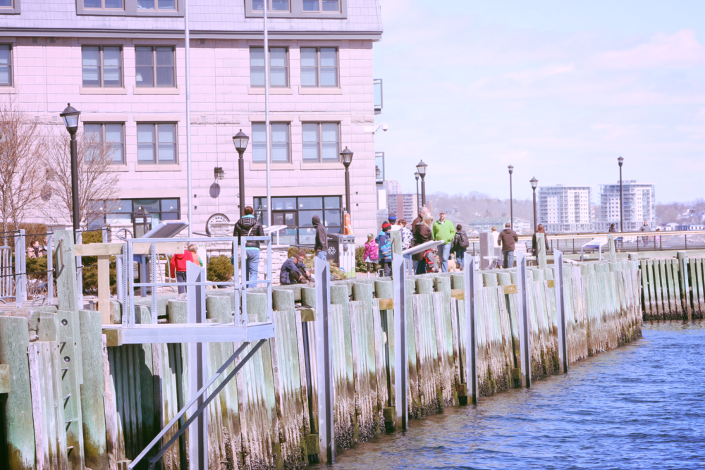 Enjoying the sights, sounds, and smells of the boardwalk in the morning in Halifax. Photo by me.