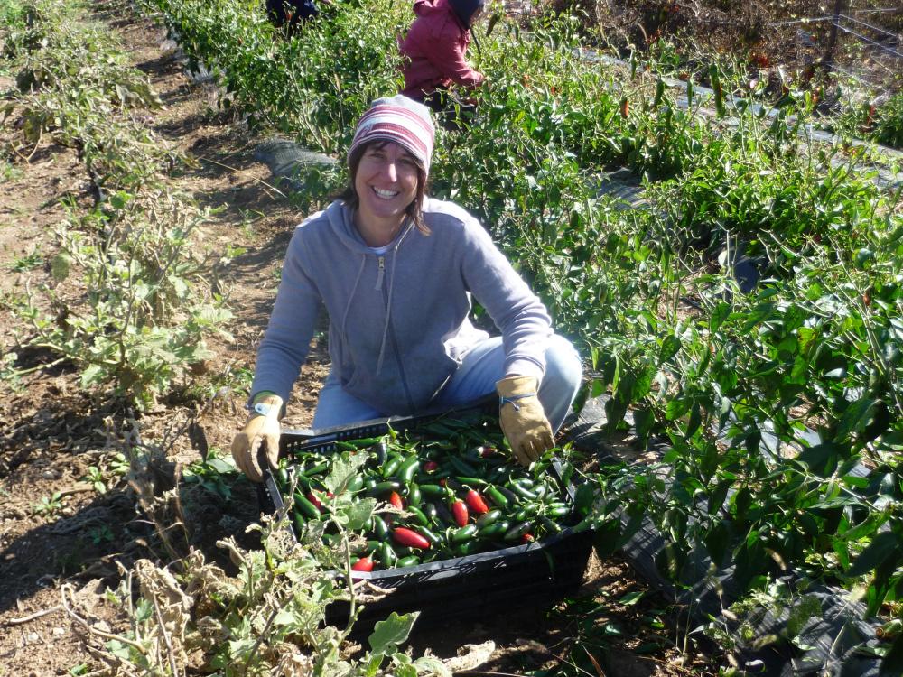 Beth Gehred in her community garden