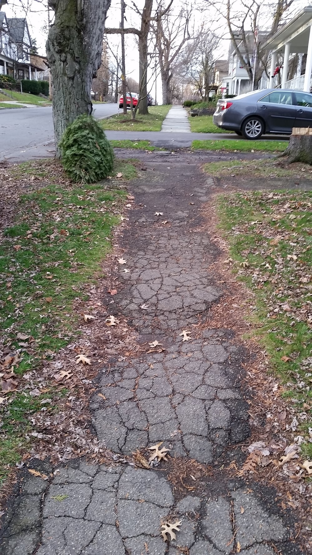 Sidewalk Cracks.jpg