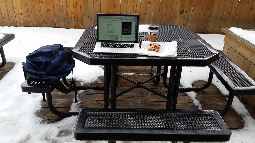 Perfect day to work on the patio!