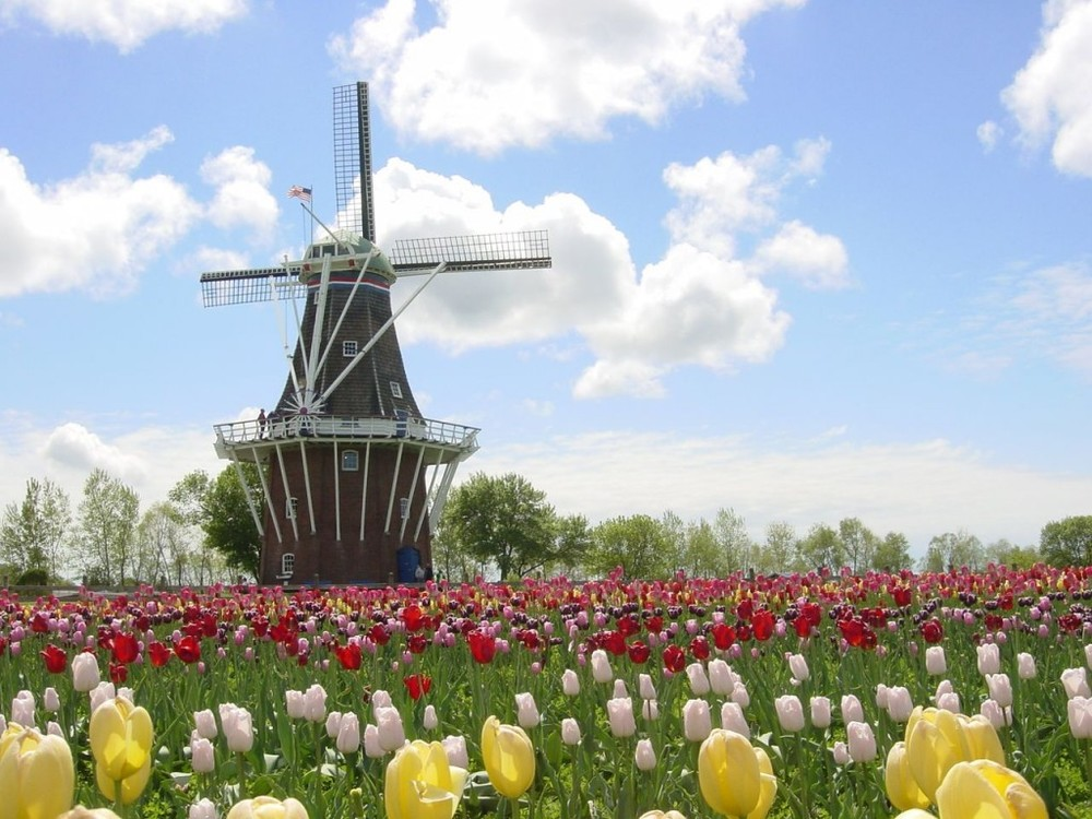Photo courtesy of Discover Holland