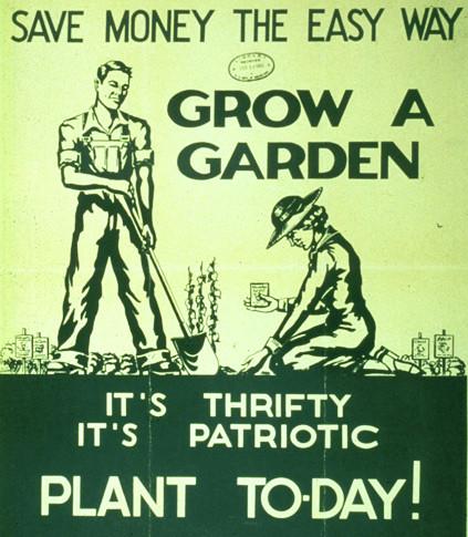 garden,poster,gfe,nature,plant,vintage-e5bd018385744c0e38dbaceecb3e1bb4_h.jpg