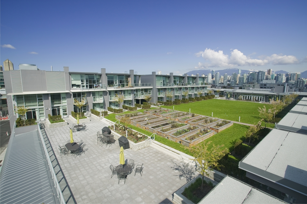 Another perspective of the residential rooftop garden and green space.