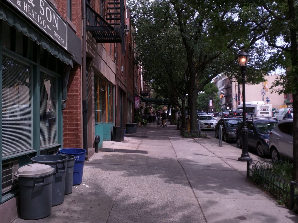 This photo and the one to the right are examples of good pedestrian infrastructure in the Brooklyn Heights neighborhood. Note how the sidewalks provide a clear, straight path while still providing the necessary space for domestic and aesthetic treatments. (Photo by Alexander Dukes.)