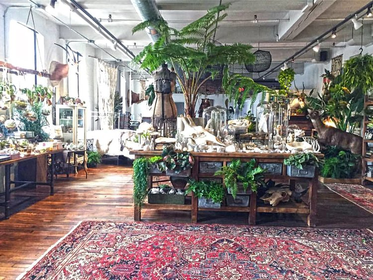 The interior of Seed to Stem, one of the local businesses housed inside Crompton Place