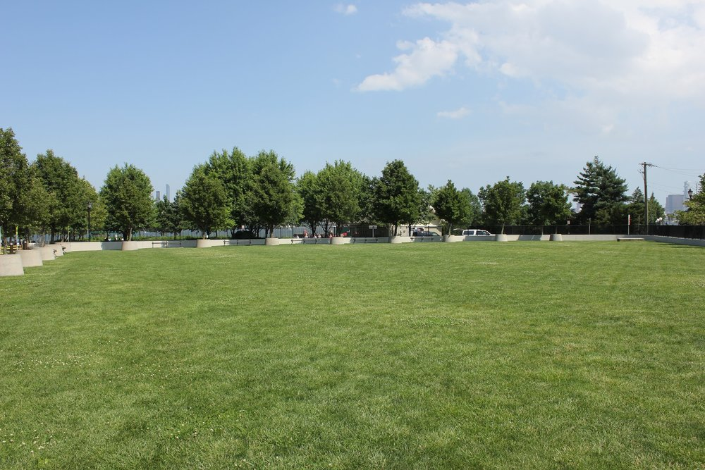 Maxwell Place Lawn. I saw somebody sunbath here once.
