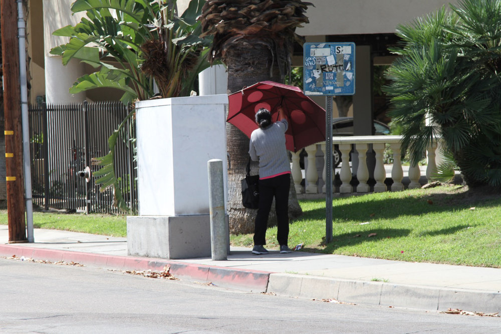 23utilityumbrella.jpg