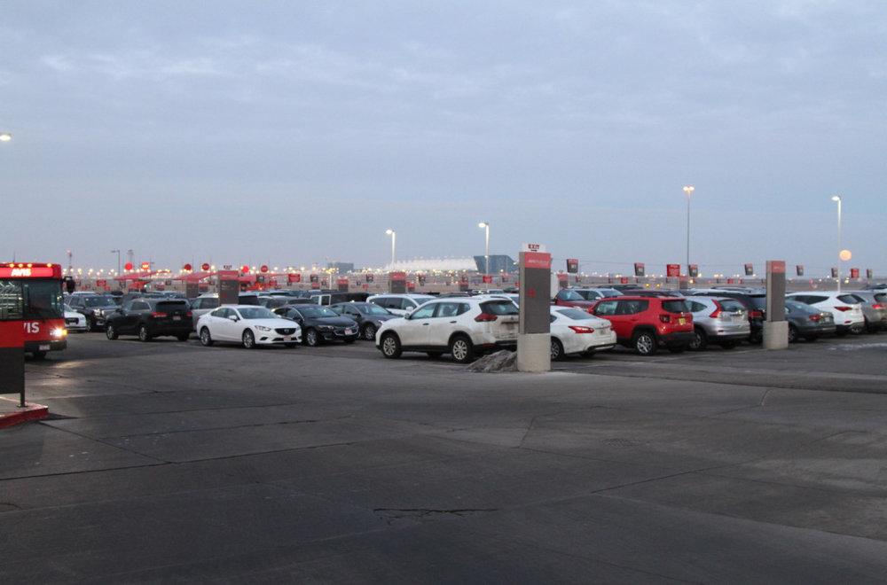 50-rental cars.jpg