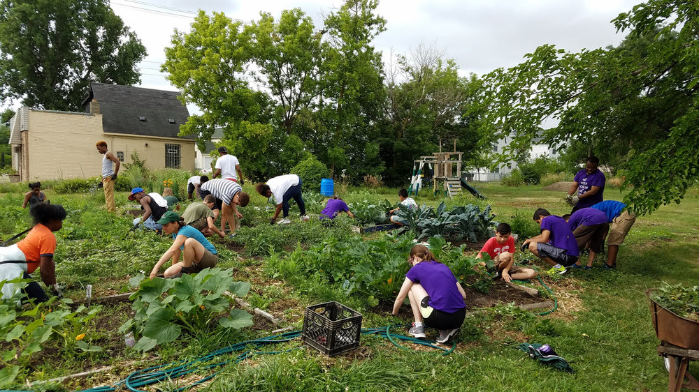 Muskegon residents build a garden in a vacant lot.