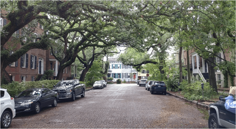 A view of the complete effect provided by the trees, micro-gardens, and urban homes.