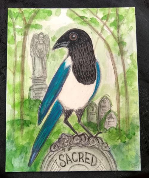 Sacred Magpie.jpg