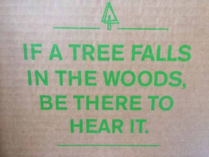 tree falls in woods.jpg