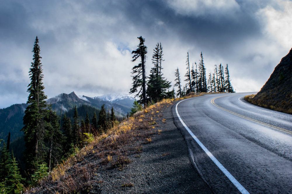 On the road in Olympic National Park. Photo by Jacqueline Kehoe